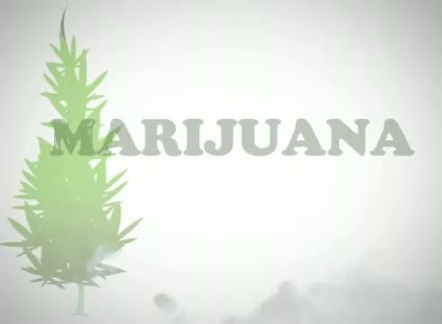 Marijuana Facts & Statistics to refute propaganda - knowledge is power