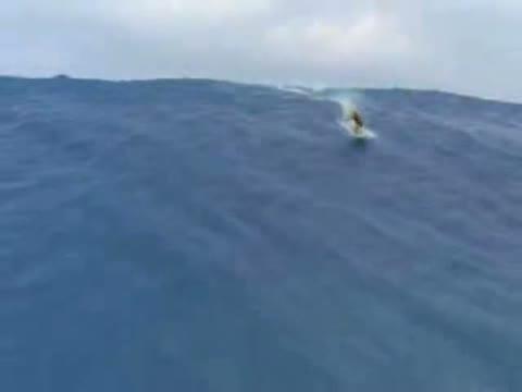 Tsunami Surfer